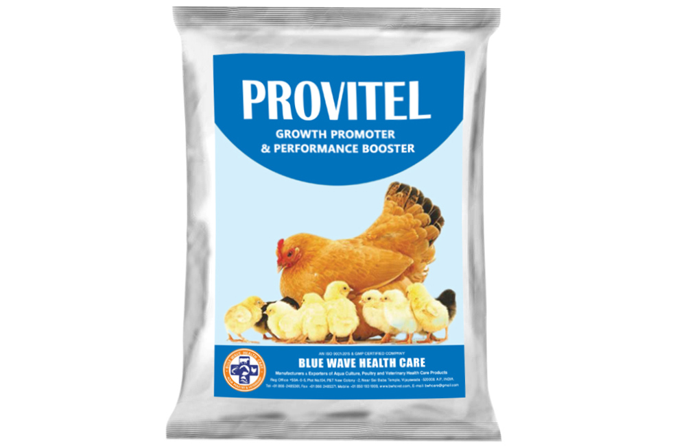 PROVITEL (Growth Promoter & Performance Booster)